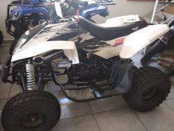 Quad 250FxApollo Motors CVM